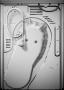 Сушильная машина для прачечной Asko TDC1481HC.S